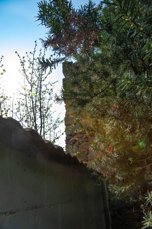 closeup of remaining wall